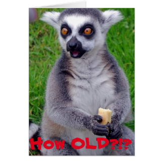 Shocked Lemur Birthday Card