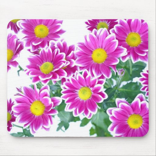 Shocking Pink Daisy Bouquet Mouse Pad