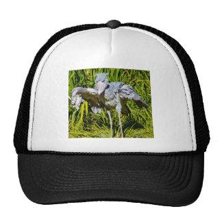 Shoebill Stork Hat