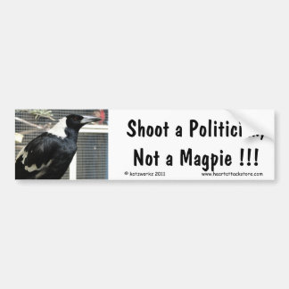 Shoot a Politician, Not a Magpie... Bumper Sticker