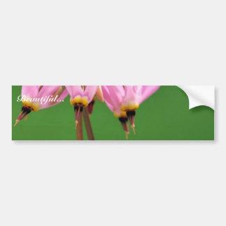 Shooting star bumper stickers