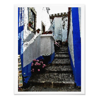 Shop and Steps in Obidos Portugal Photo Art