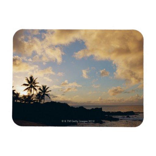 Shore 5 rectangle magnets