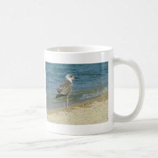 Shore bird coffee mug
