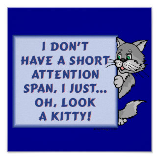 Short Attention Span Kitty Poster