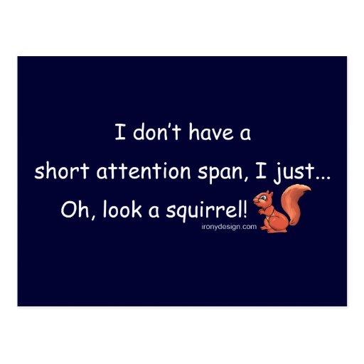 Short Attention Span Squirrel Postcard