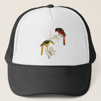 Short-billed Minivet Trucker Hat