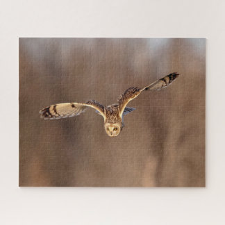 Short-eared owl diving towards the ground jigsaw puzzle