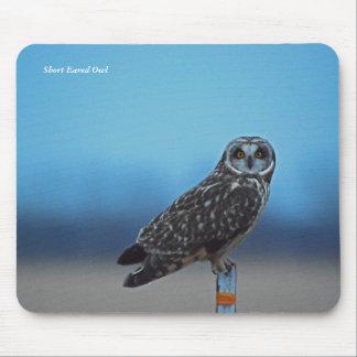 Short Eared Owl Mousepad