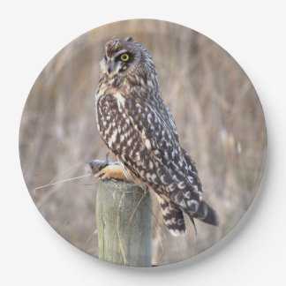 Short-Eared Owl with Vole Paper Plate