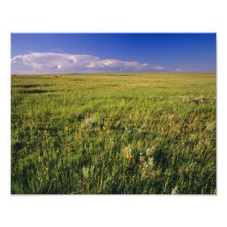 Short Grass Prairie in remote northeastern Photo
