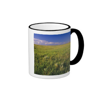 Short Grass Prairie in remote northeastern Ringer Mug