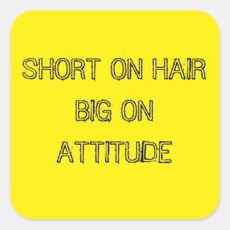 SHORT ON HAIR BIG ON ATTITUDE STICKERS
