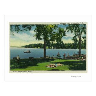Shotwell Park on a Sunny Day Postcard
