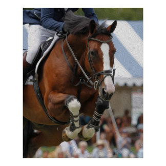 Show Jumping-Equestrian Poster
