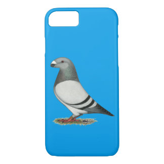 Show Racer Blue Bar Pigeon iPhone 7 Case