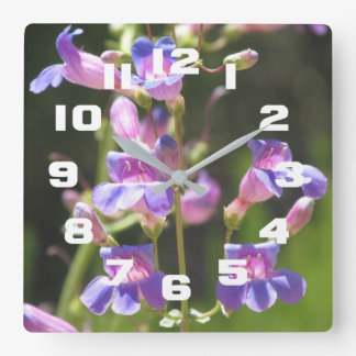 Showy Penstemon Square Wall Clock