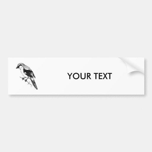 Shrike Bird Bold Line Art Bumper Stickers