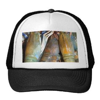 shrimp trucker hats