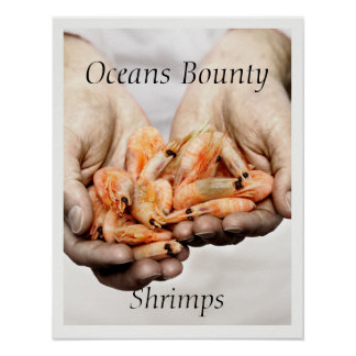 Shrimps Photography with Customisable Text Poster