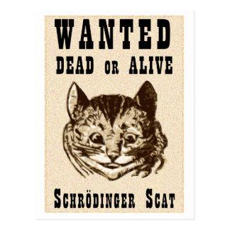 Shrodinger's cat wanted poster postcard