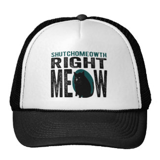 ShutchoMEOWth Right Meow - Funny Kitty Cat Mesh Hats