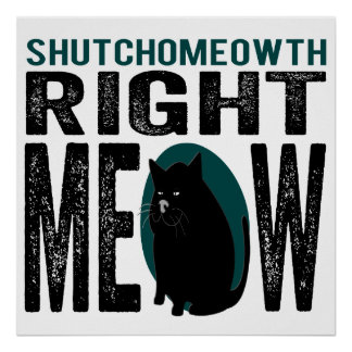 ShutchoMEOWth Right Meow - Funny Kitty Cat Poster