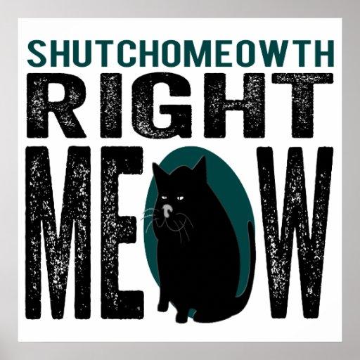 ShutchoMEOWth Right Meow - Funny Kitty Cat Print