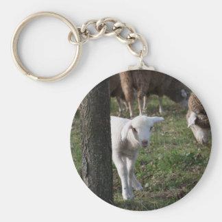 Shy lamb key ring