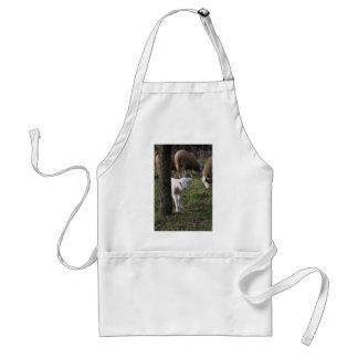 Shy lamb standard apron