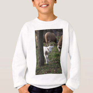 Shy lamb sweatshirt