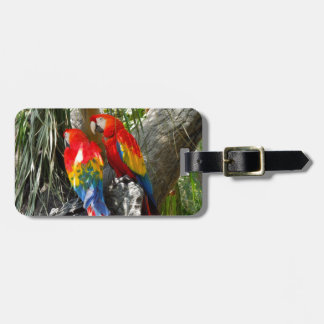SHY PARROTS LUGGAGE TAG