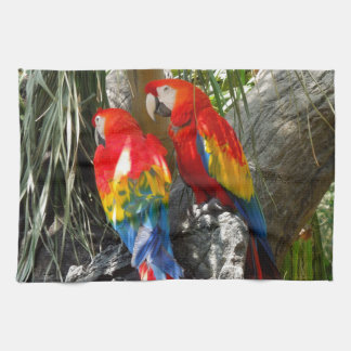 SHY PARROTS TEA TOWEL