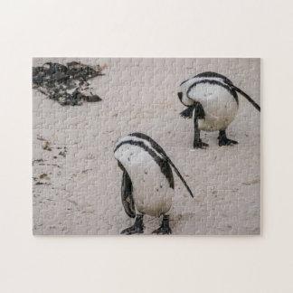 Shy Penguins Jigsaw Puzzle
