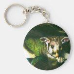 Shy Possum Keychain