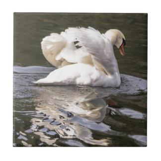 Shy Swan Ceramic Tile