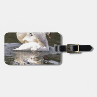 Shy Swan Luggage Tag
