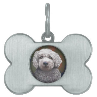Shyanne Bichon Frise/ King Charles Cavalier Pet ID Tags