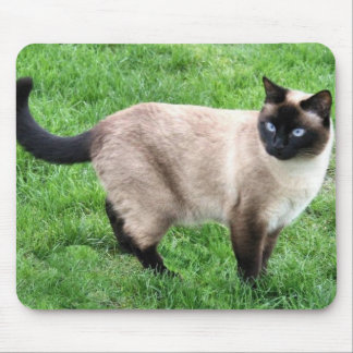 SIAMESE BEAUTY MOUSE PADS