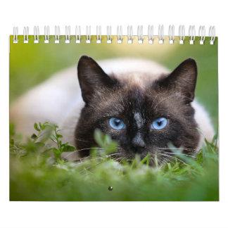 Siamese Cat Calendar