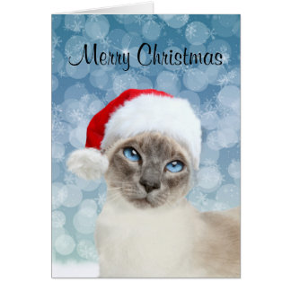 Siamese cat Christmas Card