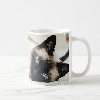 Siamese Cat Coffe Mug