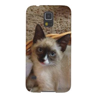 Siamese cat cute samsung galaxy nexus cover