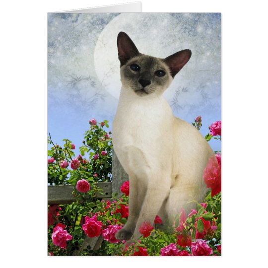 Siamese Cat in rose bed cards