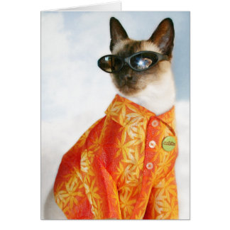 Siamese Cat in Shades Card