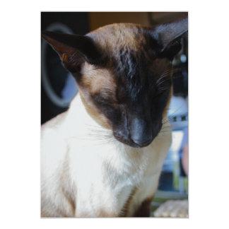 Siamese Cat Invitation Invite