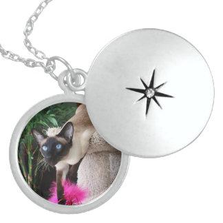 Siamese Cat Jazell Sterling Silver Round Locket