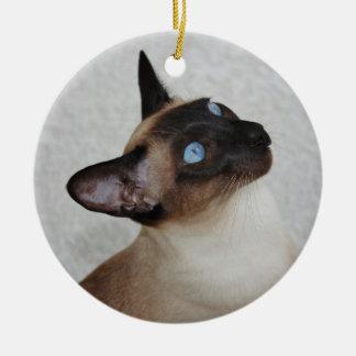 Siamese Cat Looking Up Round Ceramic Decoration