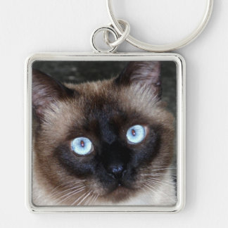 Siamese Cat Portrait Silver-Colored Square Key Ring