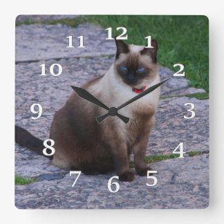 Siamese Cat Square Wall Clock